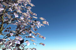 20 euro bills instead of the leaves. Close up of a tree with 20 euro bills instead of the leaves on the left and the blue sky on background Royalty Free Stock Image