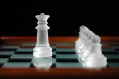 20 kawałków szachowych Fotografia Stock