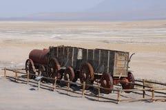 20 mule team wagon Royalty Free Stock Photo