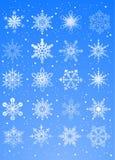 20 schöne kalte Kristallsteigungschneeflocken Lizenzfreie Stockbilder