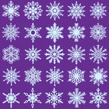 20 Vector Snow Flakes. Set of 20 Vector Snow Flakes vector illustration