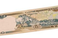 200个naura零件 免版税库存照片