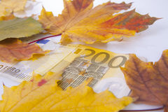 200 euro in de herfst Royalty-vrije Stock Foto