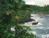 2000 01 Onomea Bay Hawaii. Stormy Onomea Bay Hawaii on the Hilo coast Royalty Free Stock Image