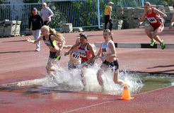 2000 Meter Steeplechase Stock Images