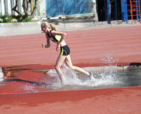 2000 Meter Steeplechase Royalty Free Stock Photography