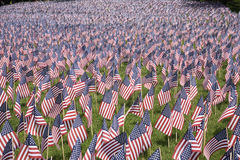 20000 flags. 20,000 American Flags on display for every resident of Massachusetts who died in a war over the past 100 years in Boston Common on the Memorial Day Royalty Free Stock Photography