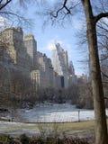 中央nyc公园冬天 免版税库存图片