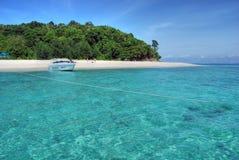 2007威严的海岛袋鼠泰国 库存照片