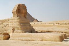 2007年开罗埃及吉萨棉狮身人面象 库存照片