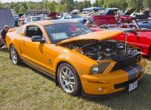 2007 de Cobra van Ford Shelby Royalty-vrije Stock Afbeeldingen