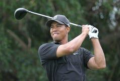 2007 doral Tiger Woods Arkivbilder