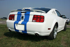 2007 Ford Mustang GT Rear stock photography