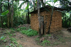 2008个第2个刚果11月博士难民 库存照片