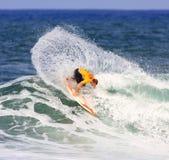 2008夏威夷赞成礁石 免版税库存图片