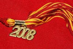 2008年毕业缨子 库存图片