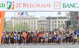 2008年贝尔格莱德马拉松 库存图片