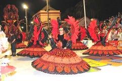 2008年阿根廷狂欢节2月 库存图片