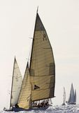2008条挑战经典panerai游艇 免版税图库摄影