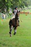 2008 événements équestres olympiques Image stock