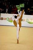 2008 μεγάλο γυμναστικό Μιλάν&omic Στοκ Εικόνα