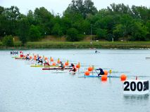 2008 Flatwater European Championships Royalty Free Stock Images