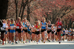 2008年波士顿马拉松奥林匹克s试算我们妇女 库存图片