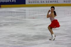 2009个冠军判断意大利整体滑冰 库存照片