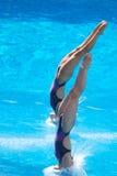 2009个冠军fina世界 免版税库存照片