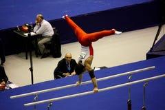 2009艺术性的冠军欧洲体操 库存图片