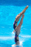 2009 campeonatos del mundo de FINA Fotos de archivo libres de regalías