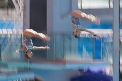 2009 campeonatos del mundo de FINA Imagenes de archivo