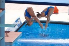 2009 campeonatos do mundo de FINA Imagem de Stock Royalty Free