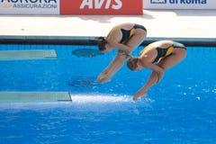 2009 campionati del mondo di FINA Fotografia Stock Libera da Diritti