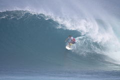 2009 champion de Pipemasters - terrier de Taj Photo stock