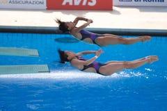2009 championnats du monde de FINA Images libres de droits