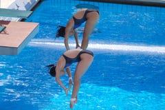 2009 FINA Weltmeisterschaften Lizenzfreie Stockbilder