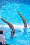 2009 FINA World Championships Royalty Free Stock Photo