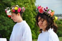 2009 jesień druids równonoc Obrazy Royalty Free