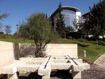 2009 prętowy dahan gemowy ilan parkowy uniwersytet Obrazy Royalty Free