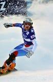 2010个杯子巨人并行雪板世界 库存图片