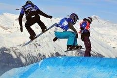 2010交叉杯子雪板世界 库存图片