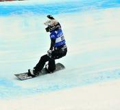 2010交叉杯子雪板世界 库存照片