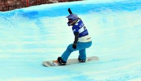 2010交叉杯子雪板世界 免版税库存照片