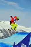 2010交叉杯子markus schairer雪板世界 免版税图库摄影