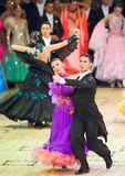 2010份比赛舞蹈国际重要资料 免版税库存图片