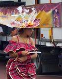 2010加勒比狂欢节莱斯特英国 库存图片