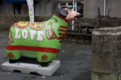 2010只对城镇的威严的11月绵羊skipton 库存照片