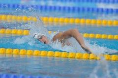 2010年布达佩斯冠军len游泳 库存照片