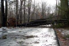 2010年汉普郡新的风暴冬天 免版税图库摄影